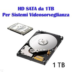 HD SATA 1 TB Specifico per DVR Videosorveglianza
